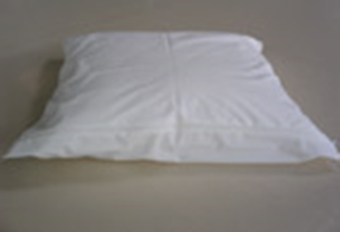Picture of Pillow protection